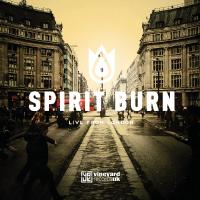 Spirit_burn_200x200